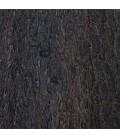 Eucalyptus fumé (loupe)