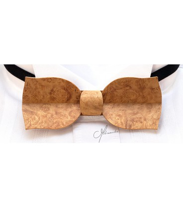 Bow tie in wood, Tulip in gold Amboyna burl - MELISSAMBRE