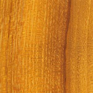 Oranger des Osages