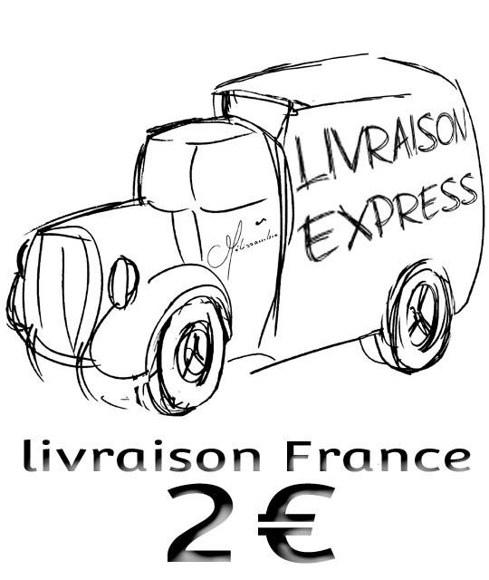Livraison France gratuite
